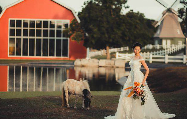 A bride at the Old Grove Farmstead